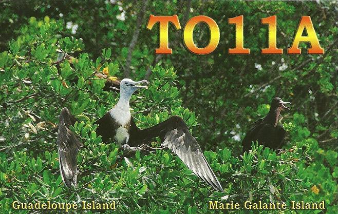 TO11A Guadeloupe