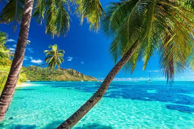 FO/F1SMB French Polynesia
