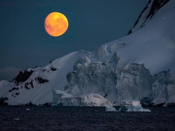 ZS7ANF - Antarctica
